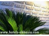 Отель «Инжир Вилладж»/«Injir Village», территория, внешний вид