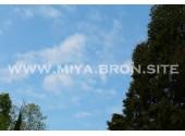 База отдыха «Мия», территория, коттеджи ( домики)